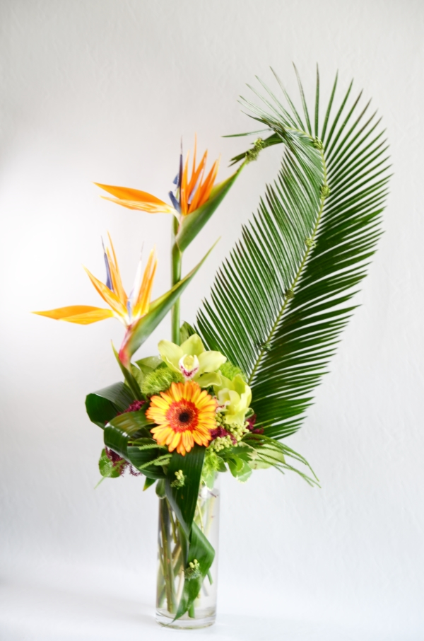 Birds of Paradise - Signature Floral Gallery