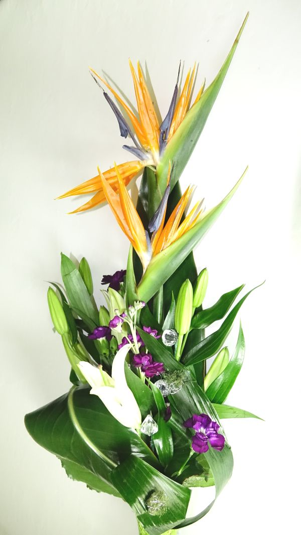 Bird of Paradise Bouquet - Signature Floral Gallery